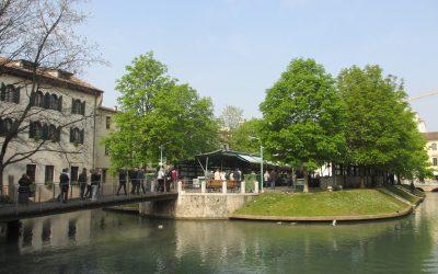 Foto visita culturale Treviso 2 aprile 2014